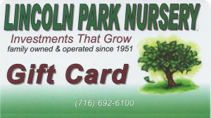 Lincoln-Park-Gift-Cards