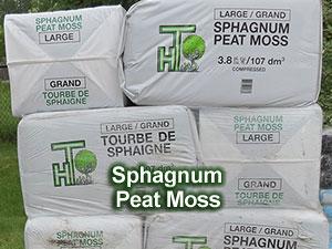 Sphagnum-Peat-Moss