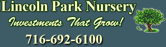 Lincoln Park Nursery